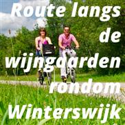 Route langs de wijngaarden rondom Winterswijk
